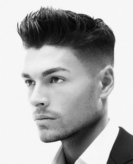 Modele homme coiffure